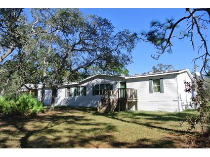 14472 Mocking Wren Road, Weeki Wachee, FL