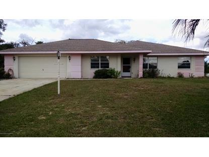 11501 Janet Avenue Spring Hill, FL MLS# 2197002
