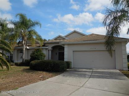 13432 Twinberry Drive Spring Hill, FL MLS# 2197929
