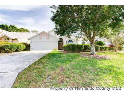 9408 New Orleans Drive Weeki Wachee, FL MLS# 2198227