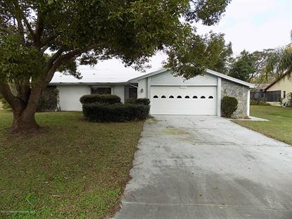8535 Beach Road Spring Hill, FL MLS# 2198941