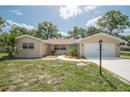 11261 Riddle Drive Spring Hill, FL MLS# 2202052