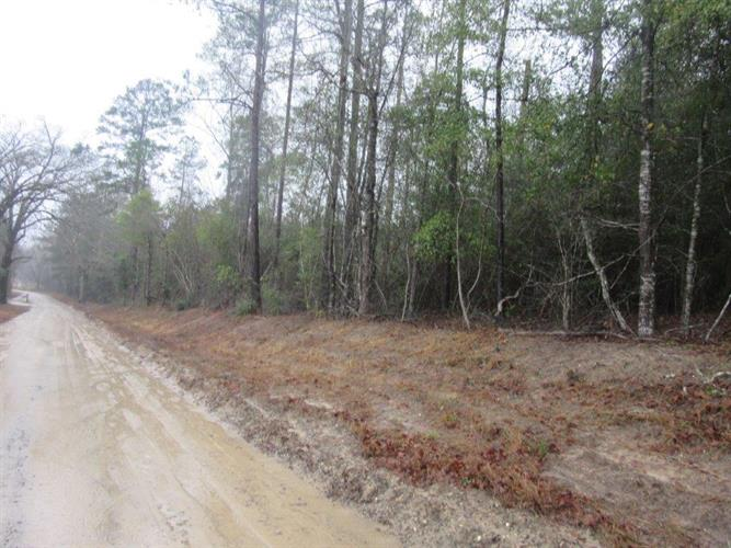 2125 NW County Road, Burkeville, TX 75932