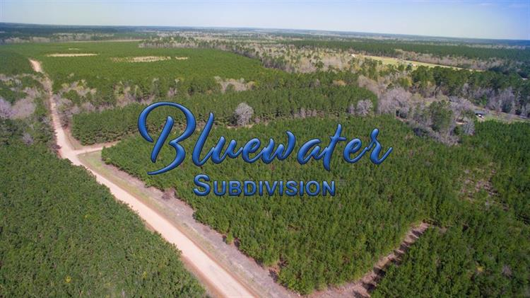 22.826 Ac Bluewater Road, Livingston, TX 77351 - Image 1