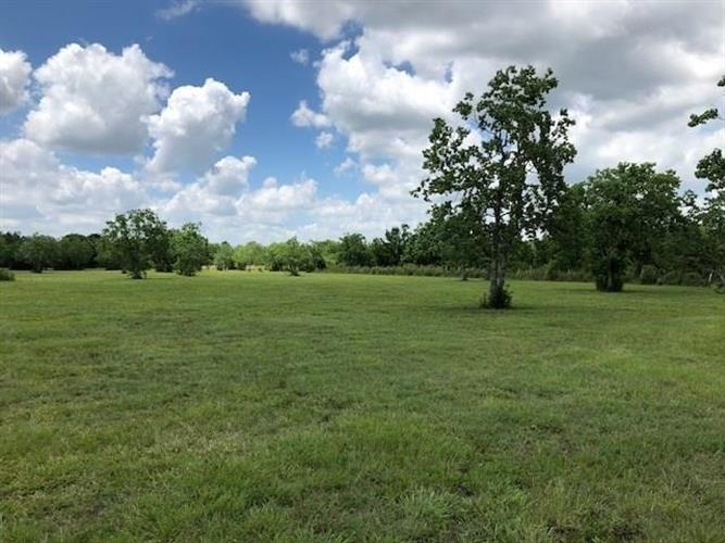 Tract 5 County Road 4893, Dayton, TX 77535