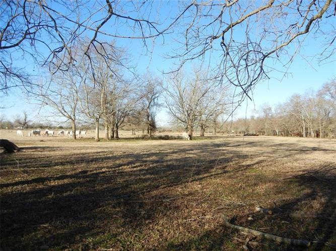 000 Peach Ridge Lane, Brookshire, TX 77423 - Image 1
