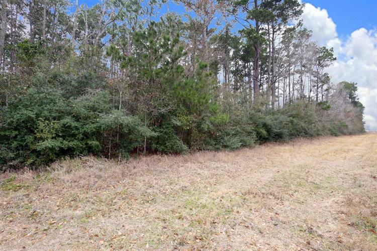 A0467 Reynolds George Tract 2-A, Magnolia, TX 77354