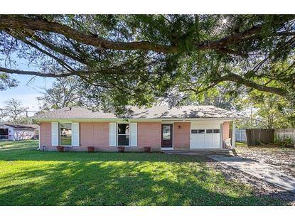 160 E Herring Street Sour Lake, TX MLS# 10100824