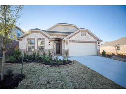 21731 Rose Maris Lane Tomball, TX MLS# 10170142