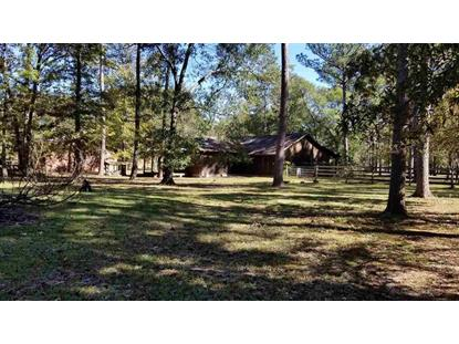 129 Bevan Circle Sour Lake, TX MLS# 10337058