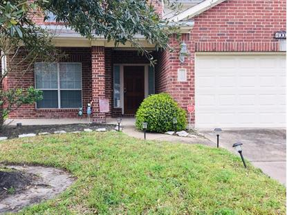 10039 Noisy Waters Drive Houston, TX MLS# 17599802