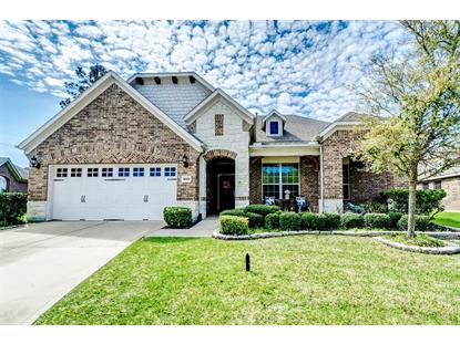 16603 Great Salt Drive, Houston, TX