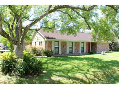 1303 Del Norte Street Houston, TX MLS# 19157371
