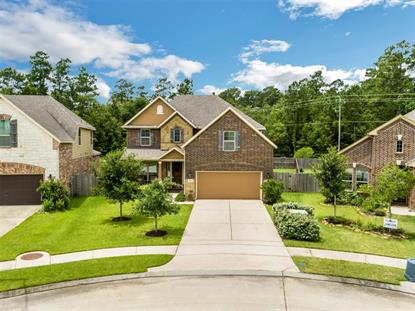 2643 Cedar Path Lane Conroe, TX MLS# 19826420