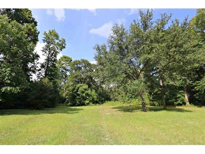 TBD HWY 87  Kirbyville, TX MLS# 19920405