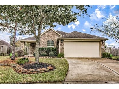 14303 Brody Falls Court Houston, TX MLS# 23536813