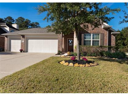 24227 Rocky Brook Falls Tomball, TX MLS# 24487900