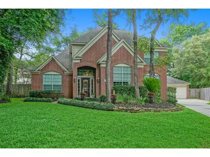 34 Windfern Place The Woodlands, TX MLS# 24841124