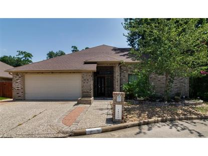 14106 Glen Canon , Houston, TX