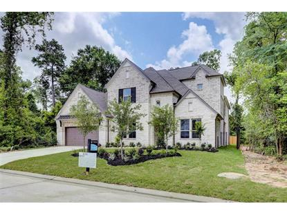 114 N Winter Sunrise Circle The Woodlands, TX MLS# 28196099