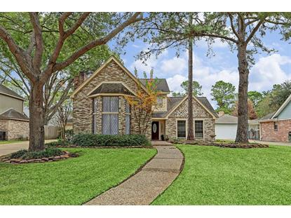 22434 Unicorns Horn Lane Katy, TX MLS# 28519539