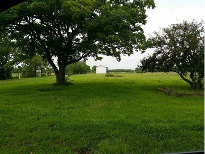 2313 N Shanks Road Angleton, TX MLS# 28546340