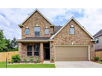 18591 Legend Oaks Drive  Magnolia, TX MLS# 287343