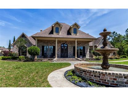 11275 Plantation Oaks Lane Lumberton, TX MLS# 29902676
