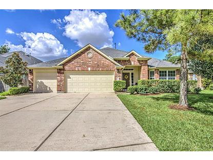 13827 Birney Point Lane, Houston, TX