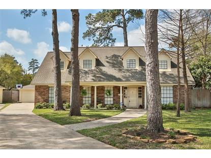 10647 Mills Circle, Houston, TX