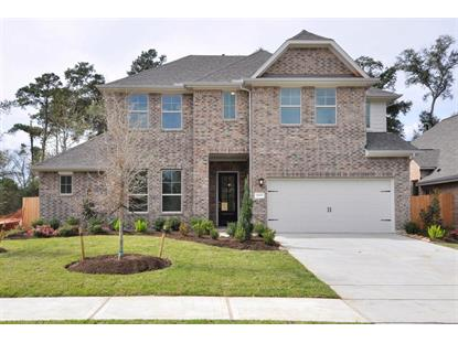 25315 Pinyon Hill Trail, Tomball, TX