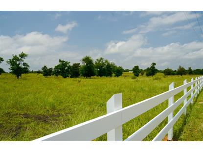 21441 FM 1155 East  Washington, TX MLS# 31625716