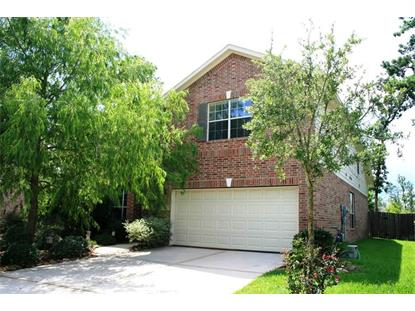 11 Rabbit Run Place Spring, TX MLS# 3266500