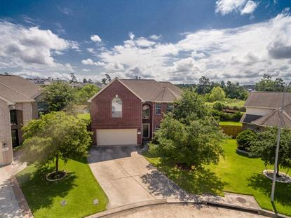 515 Fern Trace Court Spring, TX MLS# 34543173