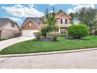 14 Majolica Place The Woodlands, TX MLS# 36963852