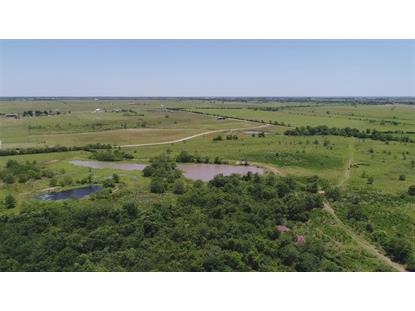 35390 Purvis Road, Waller, TX