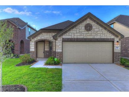 1747 York Creek , Houston, TX