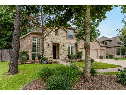 114 Dewberry Place Montgomery, TX MLS# 37811084