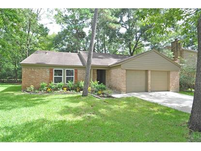 41 Kittiwake Court, Spring, TX