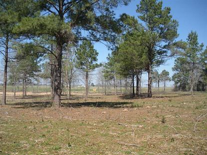 LOT 1 Highway 105 , Plantersville, TX