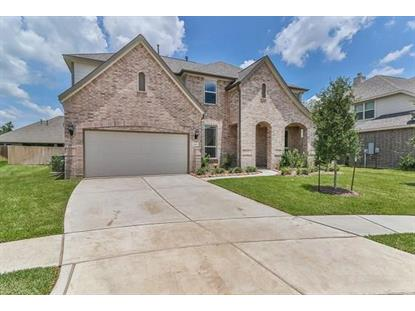 22906 Laburname Court Tomball, TX MLS# 39360689