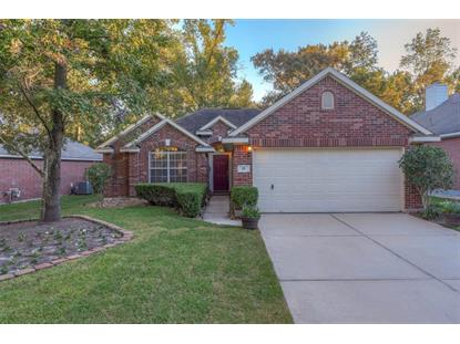 15 Wintergrass Place The Woodlands, TX MLS# 40569321