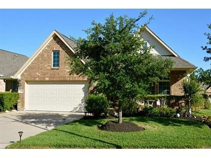 24002 Richglen Court Spring, TX MLS# 42135761