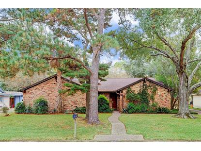 11219 Cold Spring Drive Houston, TX MLS# 43373434