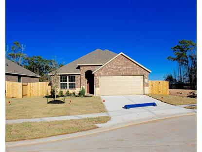 18206 Octavio Frias Trail Houston, TX MLS# 43577208