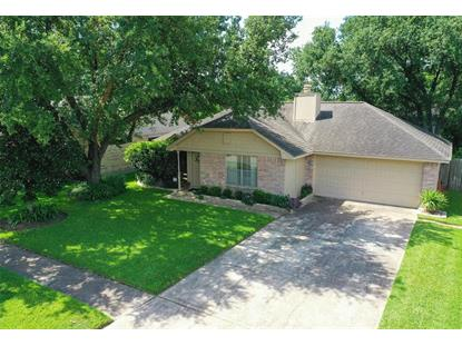 10023 Green Valley Lane Houston, TX MLS# 44129392