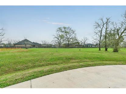 3402 Westhaven Ct Court Fulshear, TX MLS# 45977854