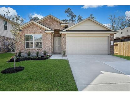 5407 Briarstone Ridge Lane Spring, TX MLS# 46867211