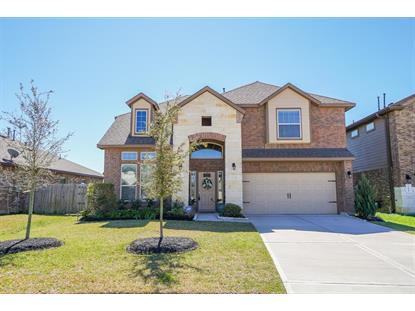 29007 Dryander Forest Court Katy, TX MLS# 4852984