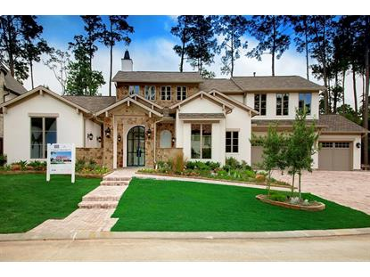 17 Honey Daffodil Place The Woodlands, TX MLS# 48843617
